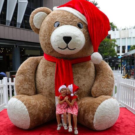 Oracle Teddy 2
